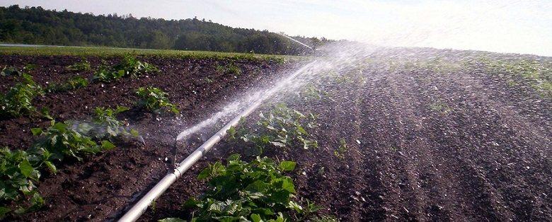 Irrigation Systems in Washington County Texas