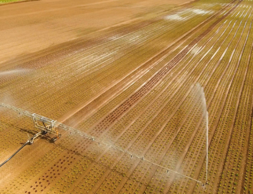 How Center Pivot Irrigation Systems Can Increase Crop Yield!